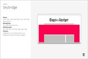 NN_Desktop_Skybridge